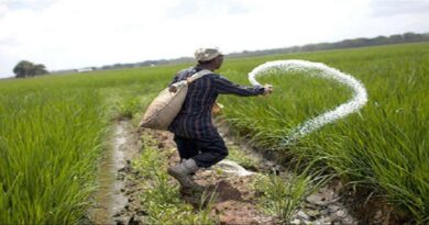 Market failure: On agriculture sector reforms